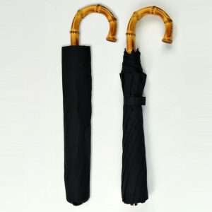 Telescopic Whanghee Crook Umbrella