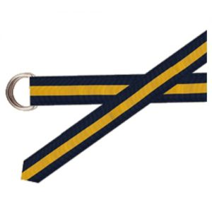 https://cablecarclothiers.com/wp-content/uploads/2018/12/BarronsHunter-Grosgrain-Belt-Navy-Maize.jpg
