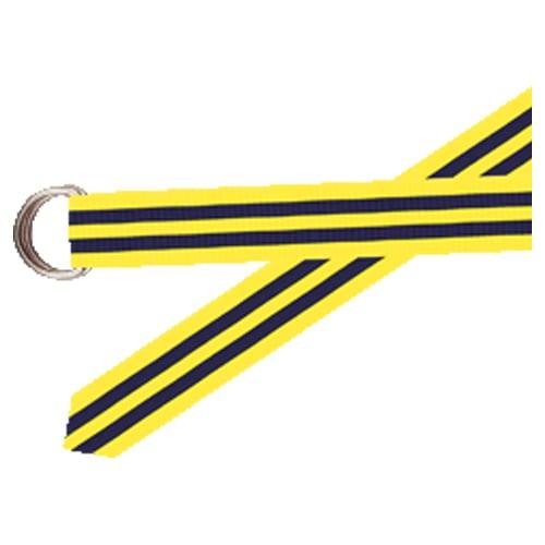 BarronsHunter Grosgrain Belt Navy Yellow