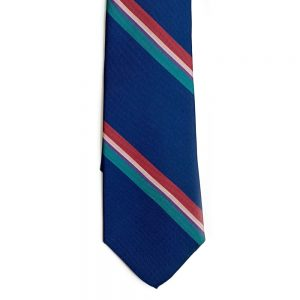 neck tie Stripe Blue